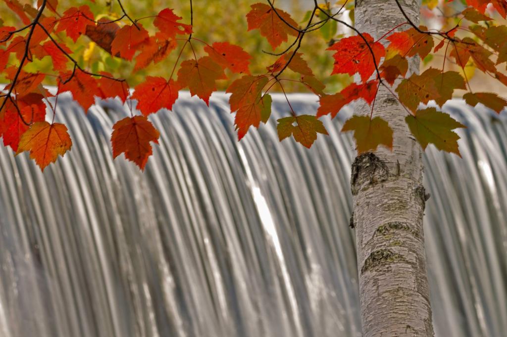 Fall in New England_Jay Arbelo