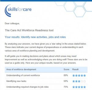 Skills-for-Care-sample-report