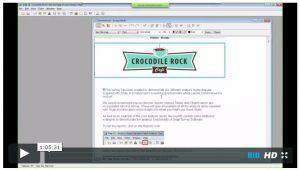 croc-rock_charts-webinar