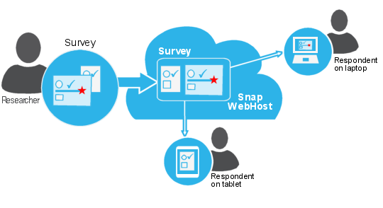 Web questionnaires: schematic