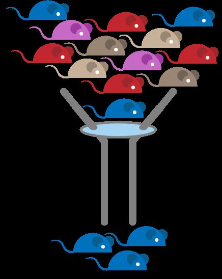 filter-mice-blue