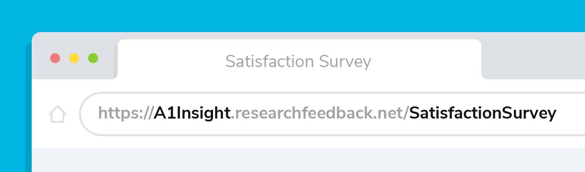 Custom survey URL in browser