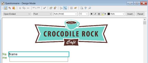 questionnaire design window